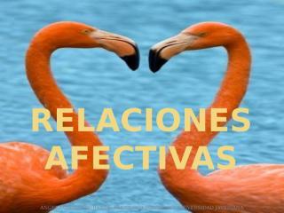 RELACIONES AFECTIVAS.pptx