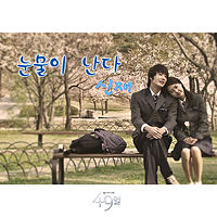 49 Days Ost - Shin Jae - Tears Are Falling.mp3